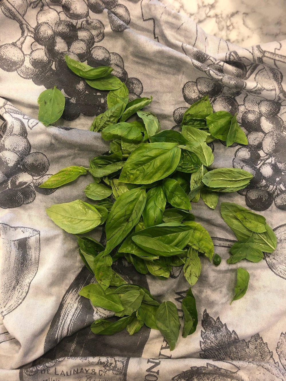 Lots of fresh basil. Clean and dried. Make sure the leaves are really dry, extra water will dilute your pesto and it won;t keep in the fridge as long.