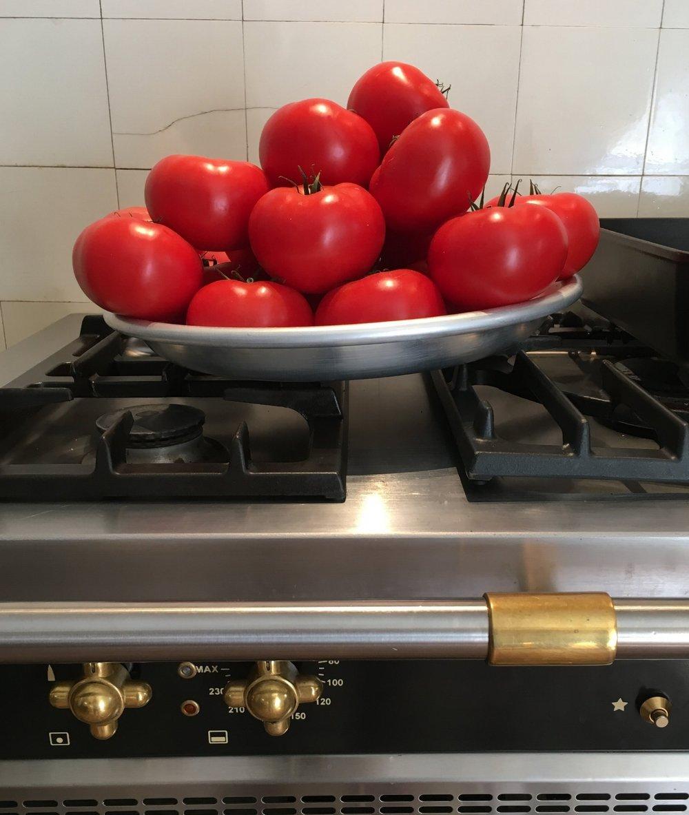 Cooking Workshop - July 2017