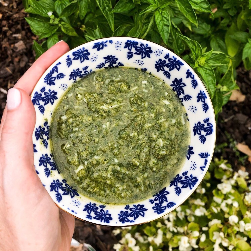 garden fresh pesto desocio in the kitchen